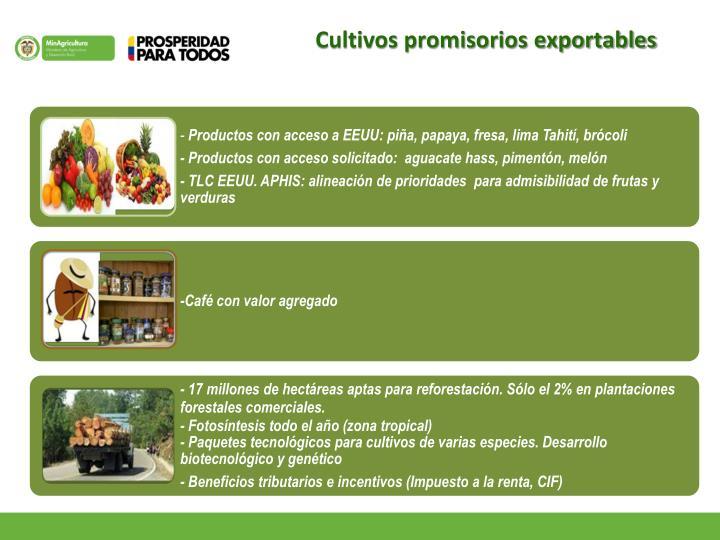 Cultivos promisorios exportables