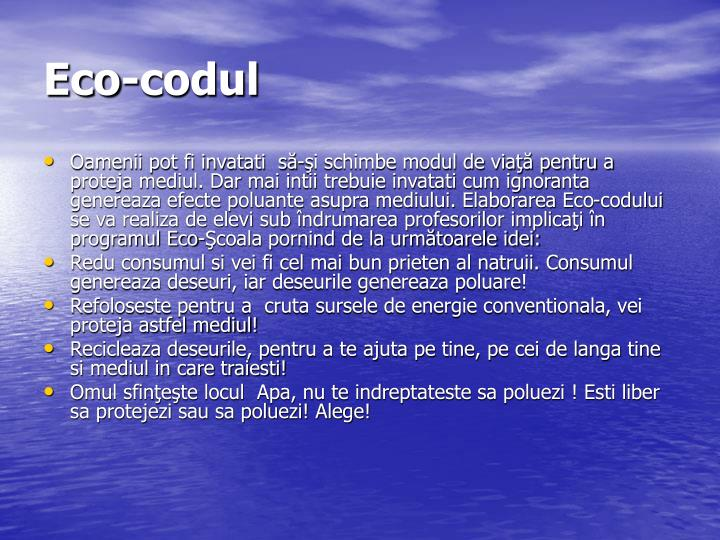 Eco-codul