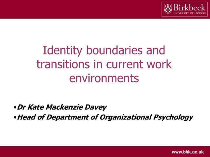identity boundaries and transitions in current work environments n.