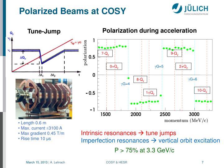 Polarized Beams at COSY