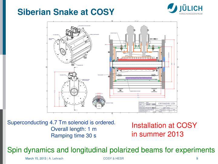 Siberian Snake at COSY
