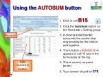 using the autosum button