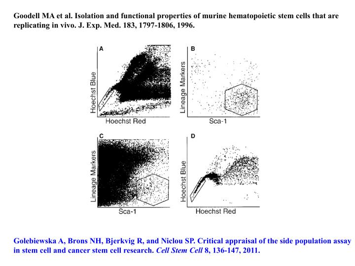 Goodell MA et al. Isolation and functional properties of murine hematopoietic stem cells that are