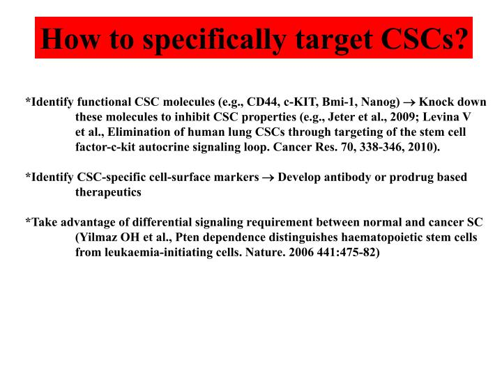 How to specifically target CSCs?