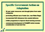 specific government action on adaptation