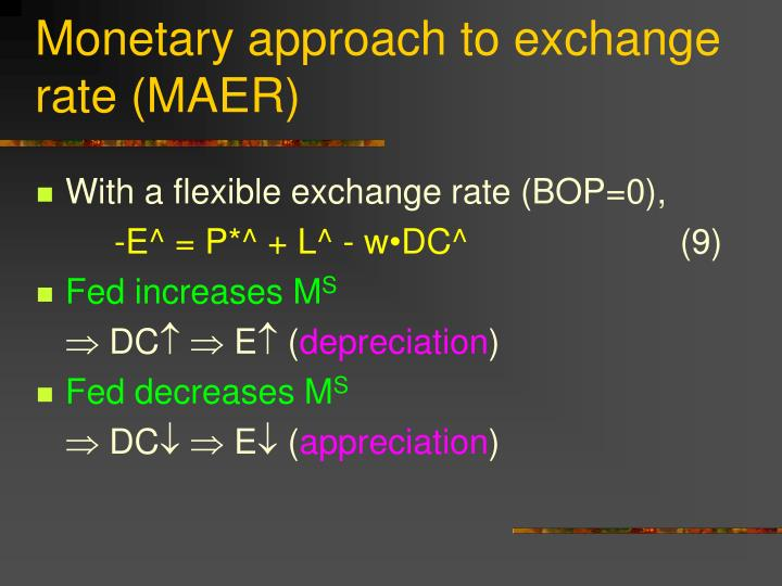 Monetary approach to exchange rate (MAER)