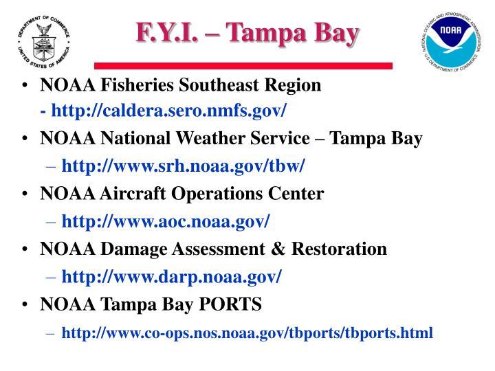 F.Y.I. – Tampa Bay