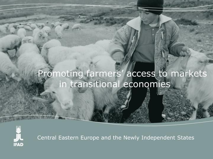 Promoting farmers' access to markets