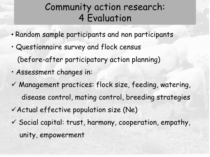 Community action research: