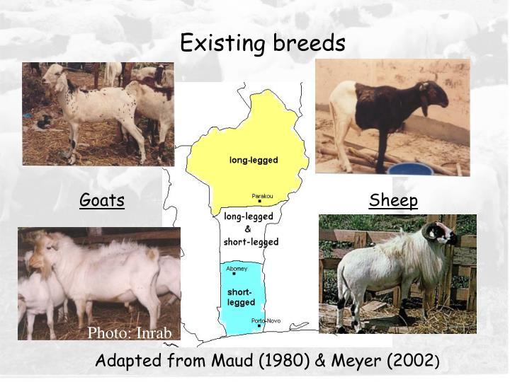 Existing breeds
