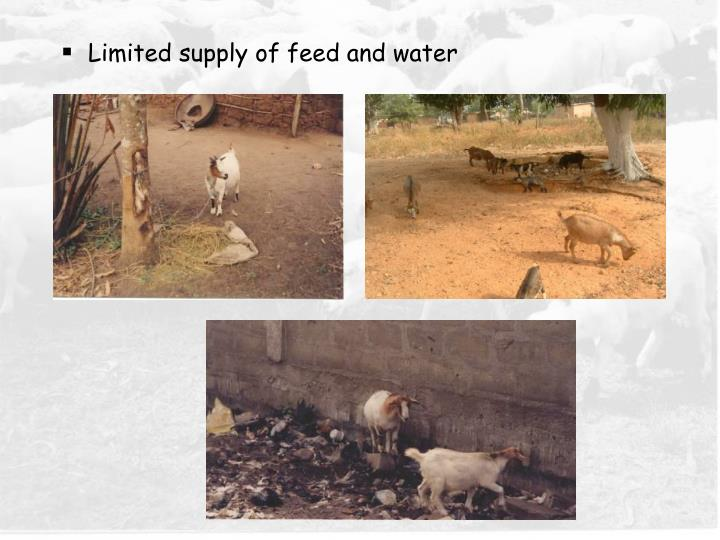 Limited supply of feed and water