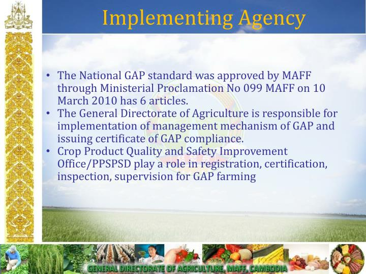 Implementing Agency
