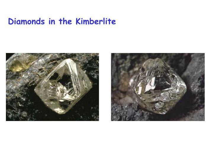 Diamonds in the Kimberlite