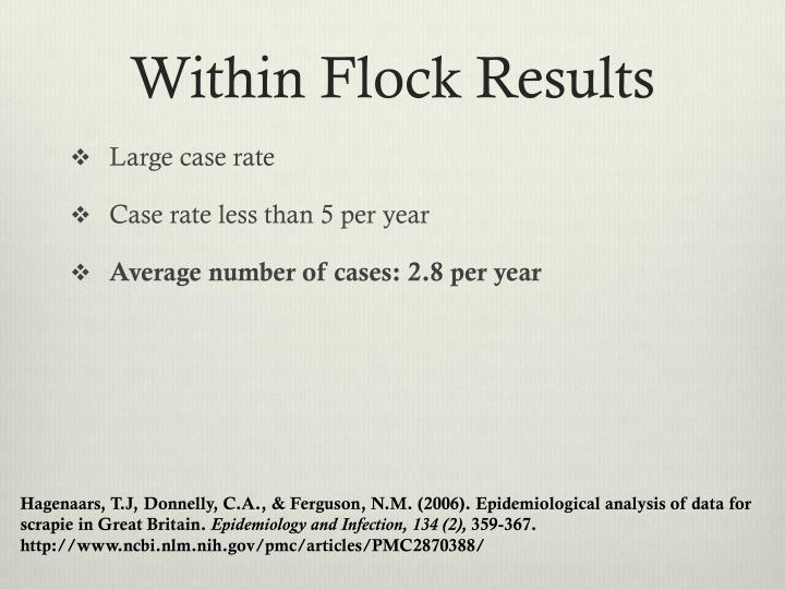 Within Flock Results