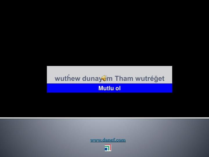 www.danef.com