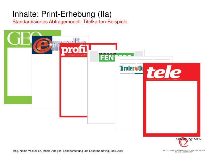 Inhalte: Print-Erhebung (IIa)