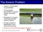 the arsenic problem