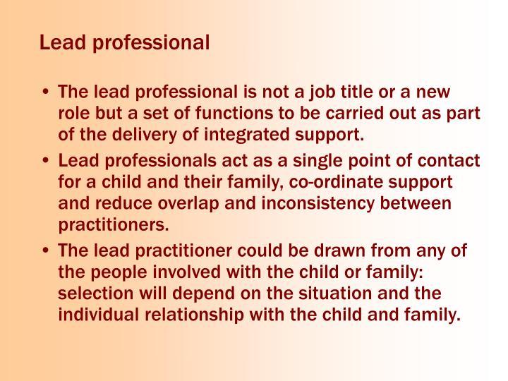 Lead professional