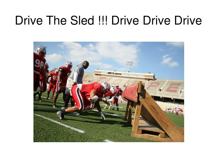Drive The Sled !!! Drive Drive Drive
