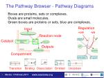 the pathway browser pathway diagrams