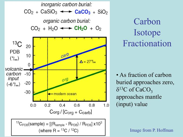 Carbon Isotope Fractionation