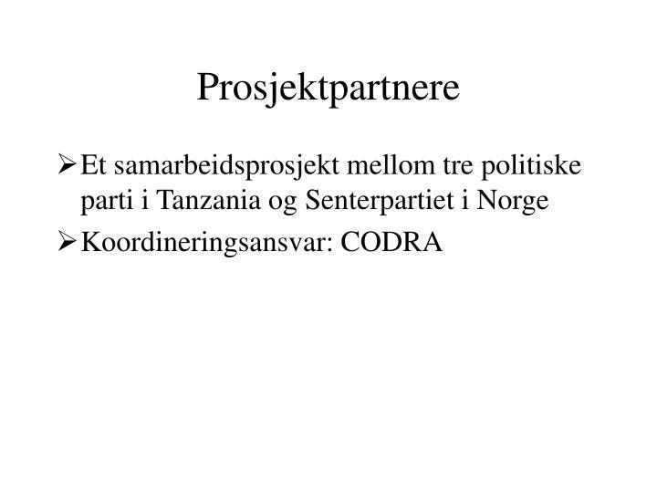 Prosjektpartnere
