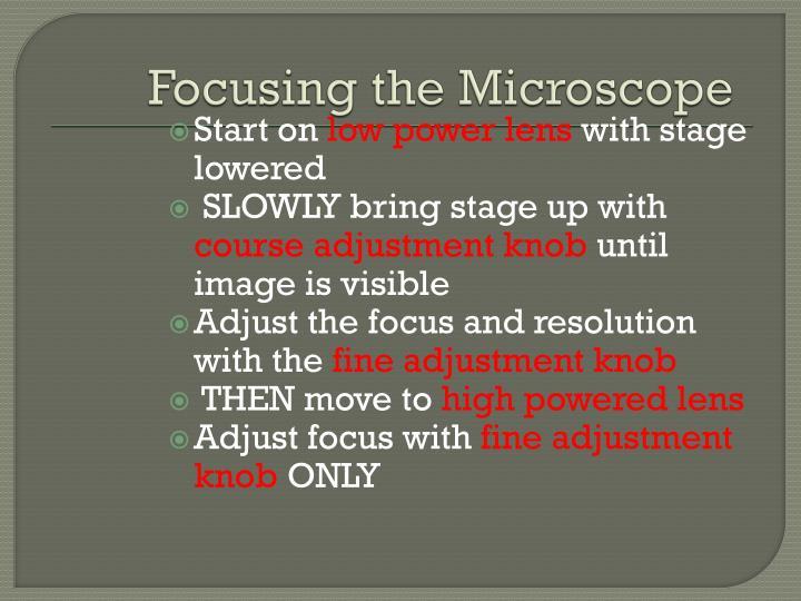 Focusing the Microscope