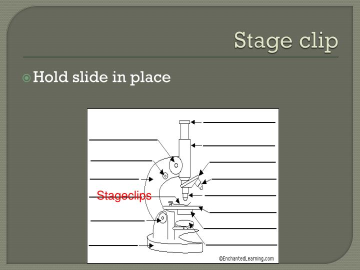 Stage clip