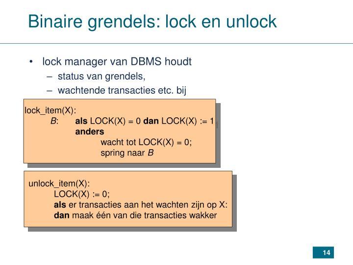 Binaire grendels: lock en unlock