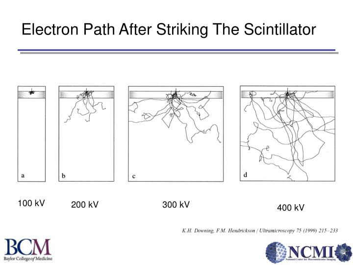 Electron Path After Striking The Scintillator