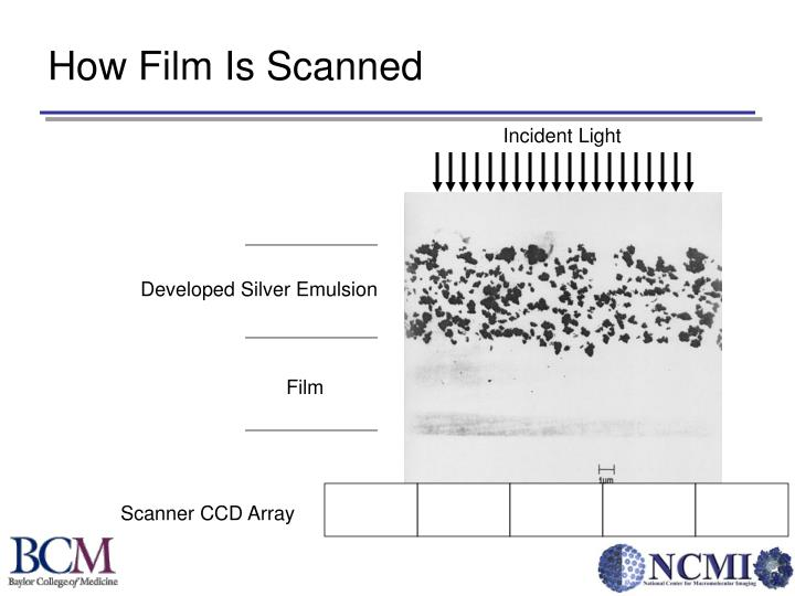 How Film Is Scanned