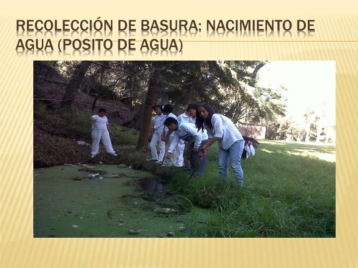Recolección de basura: nacimiento de agua (
