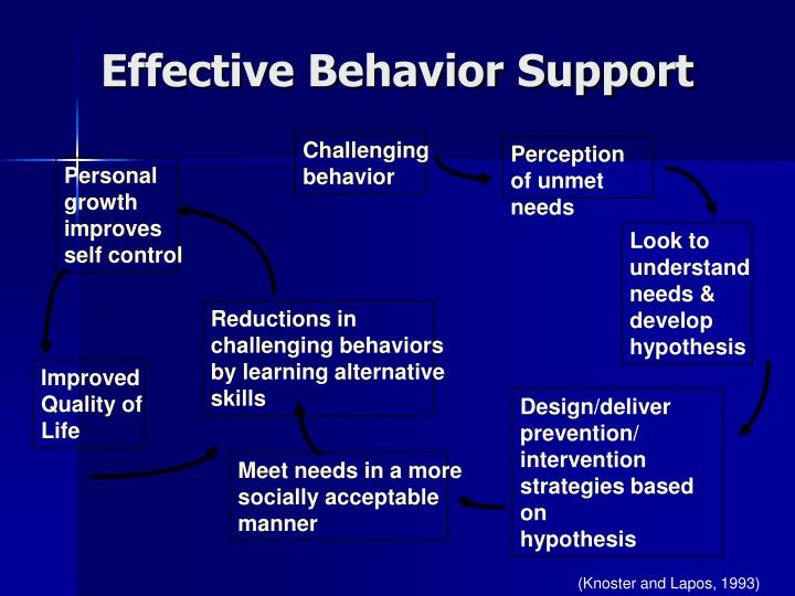 Effective Behavior Support