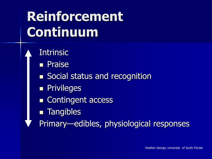 Reinforcement Continuum