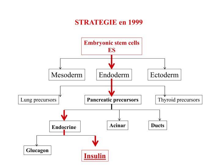 STRATEGIE en 1999