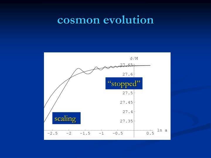 cosmon evolution
