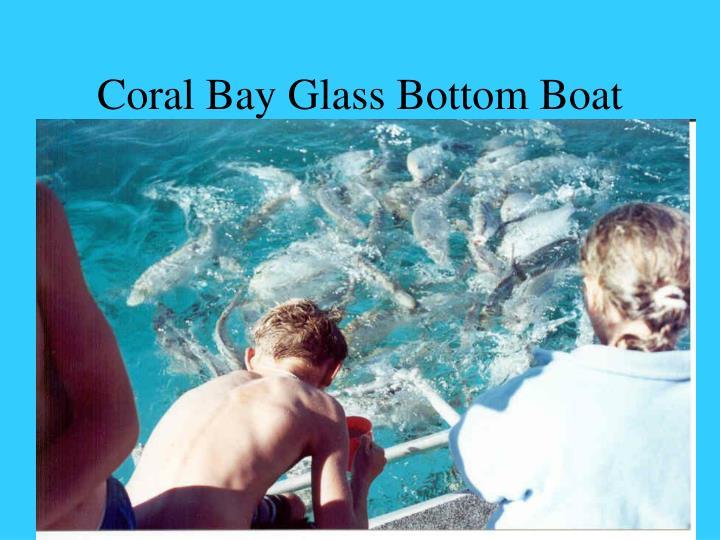 Coral Bay Glass Bottom Boat