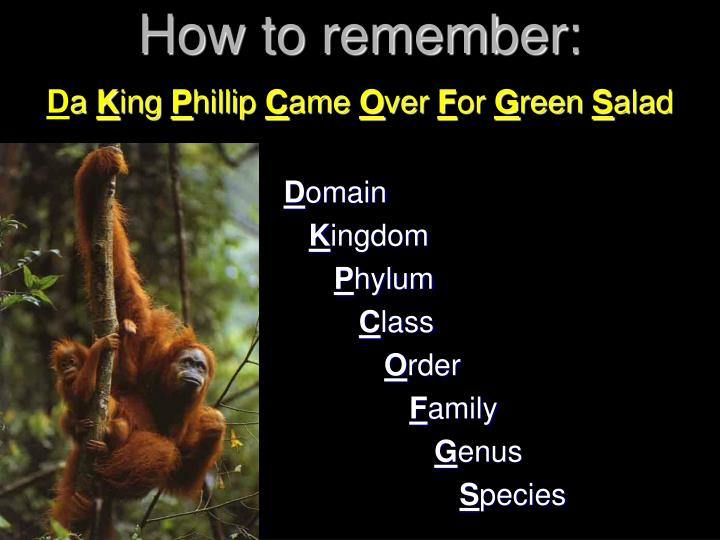 How to remember:
