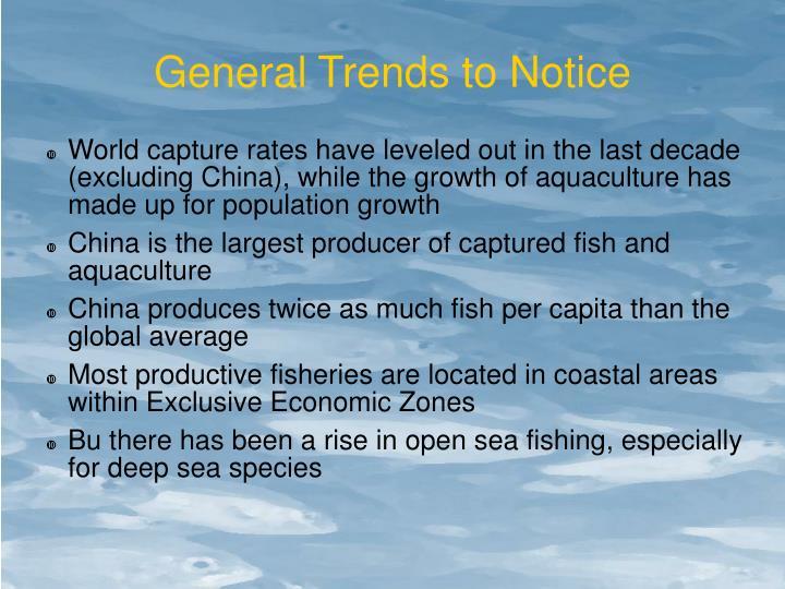 General Trends to Notice
