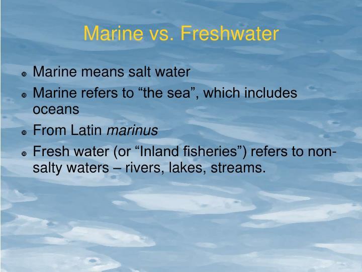 Marine vs. Freshwater