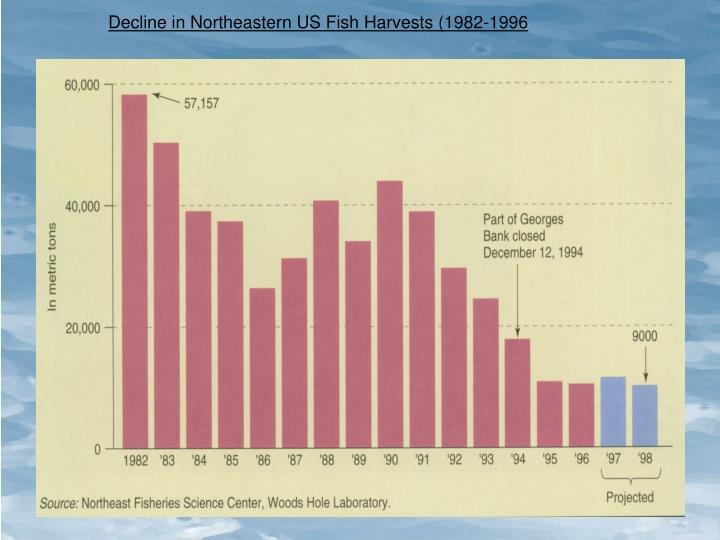Decline in Northeastern US Fish Harvests (1982-1996