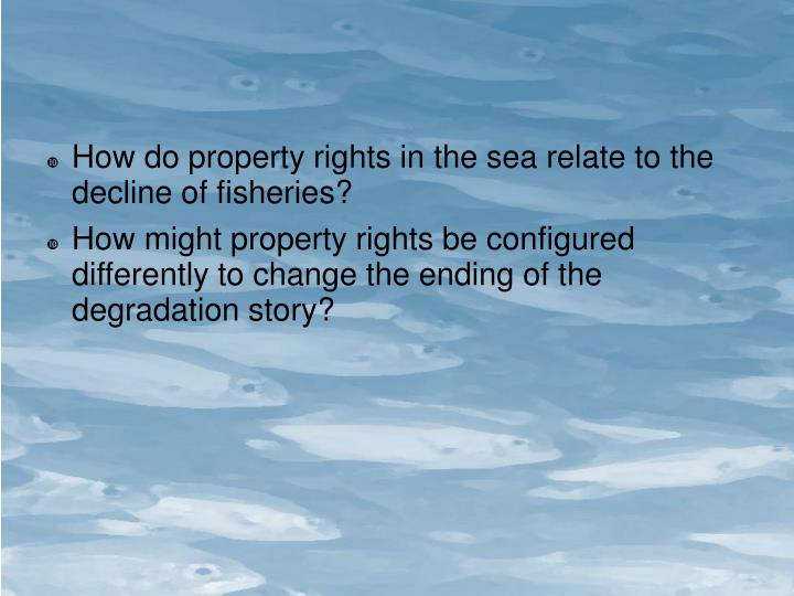 How do property rights in the sea relate to the decline of fisheries?