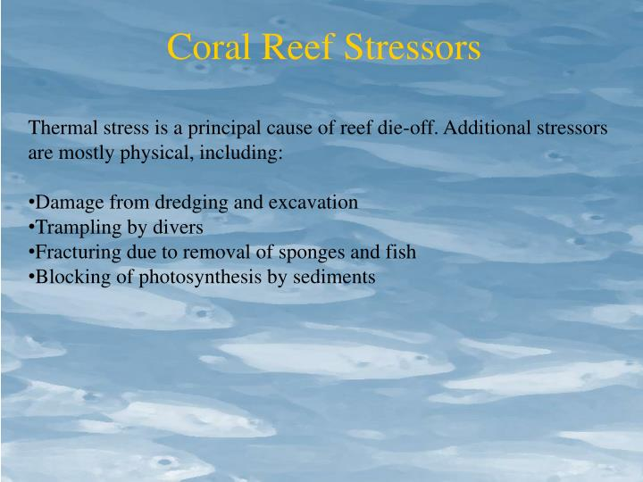 Coral Reef Stressors