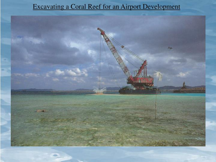 Excavating a Coral Reef for an Airport Development