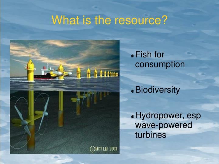 What is the resource?