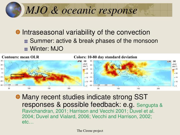 Mjo oceanic response