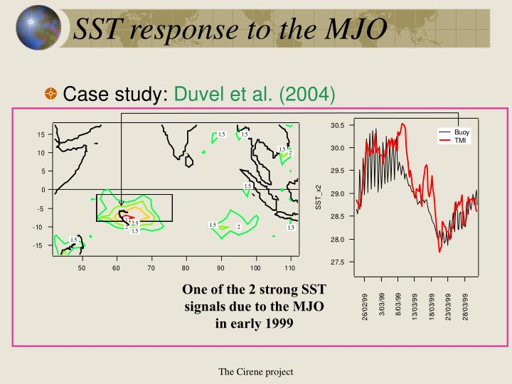 SST response to the MJO