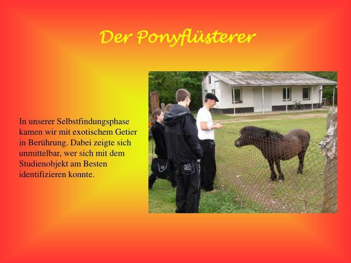 Der Ponyflüsterer