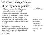 mead the significance of the symbolic gesture