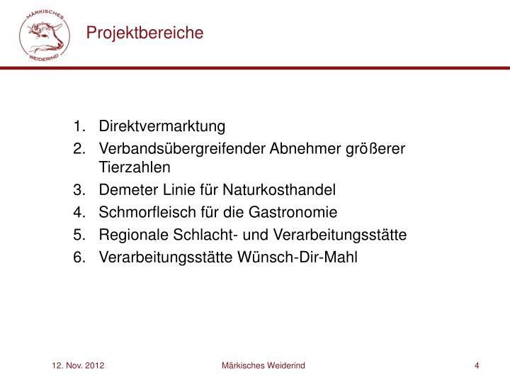 Projektbereiche